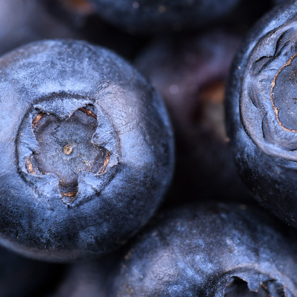 Blueberries A Superfood For Your Health Dermadoctor Blog